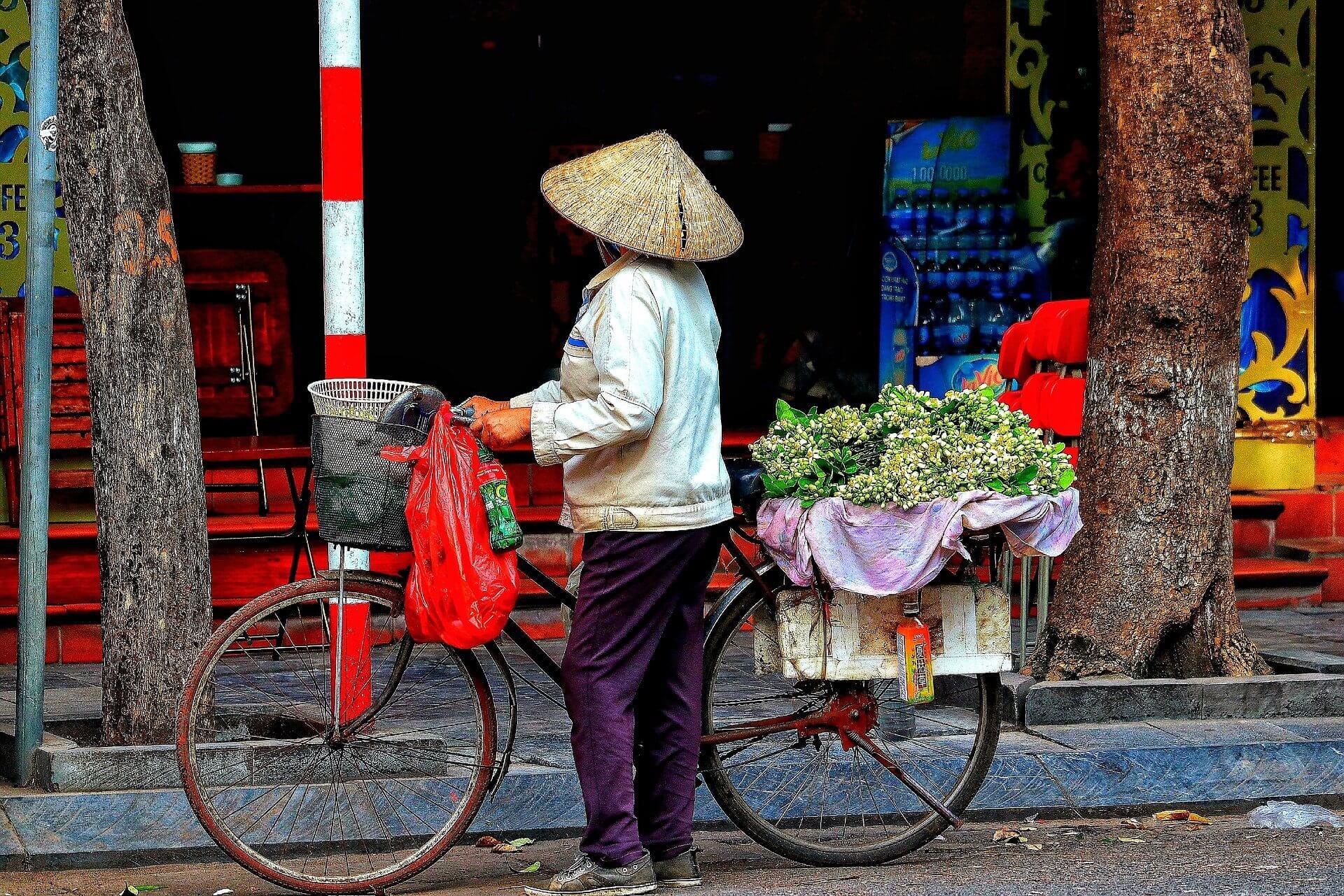 Molloy Vietnam 2021